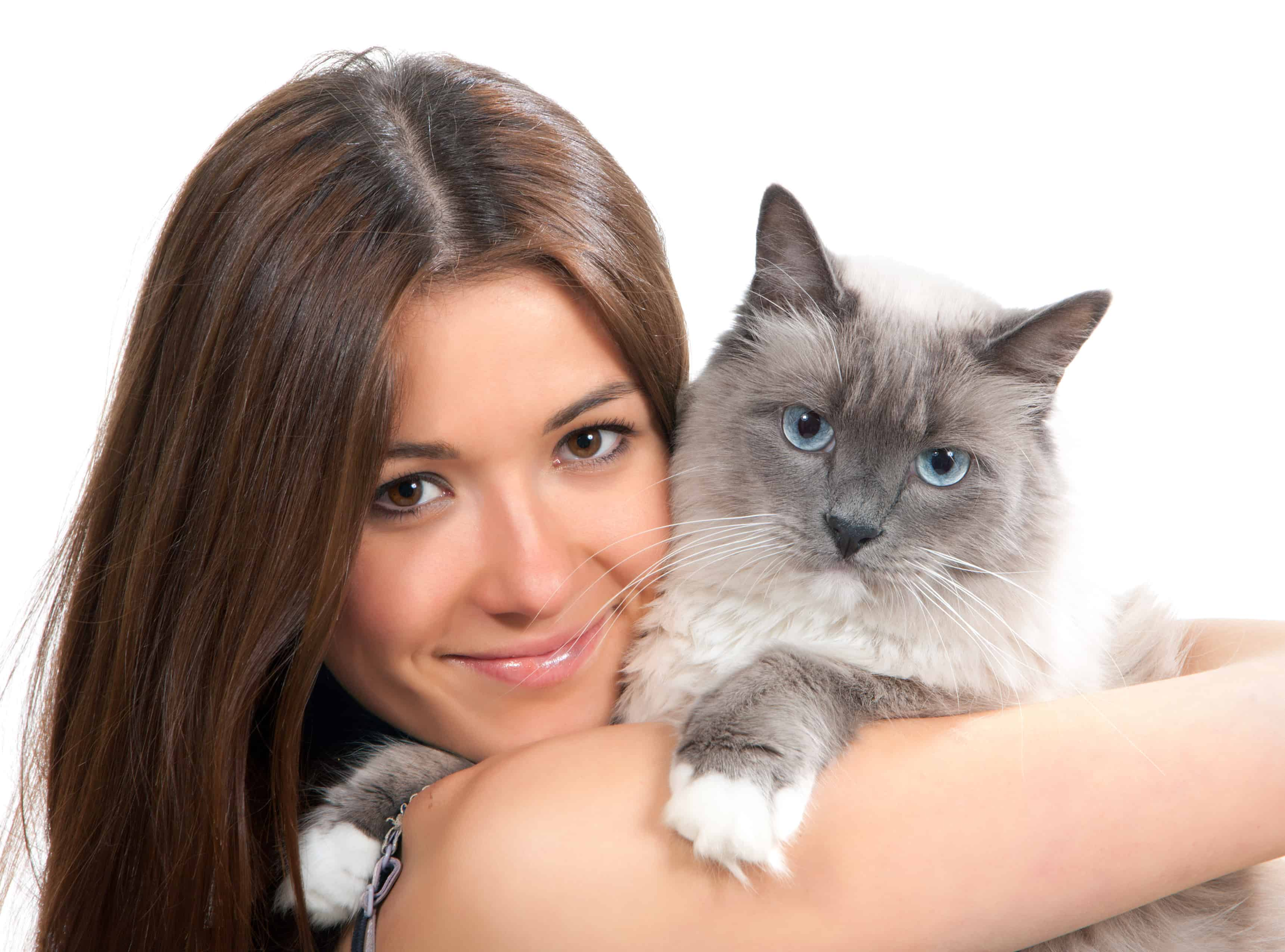 Young woman hold Ragdoll cat blue eye and smile isolated on a white background